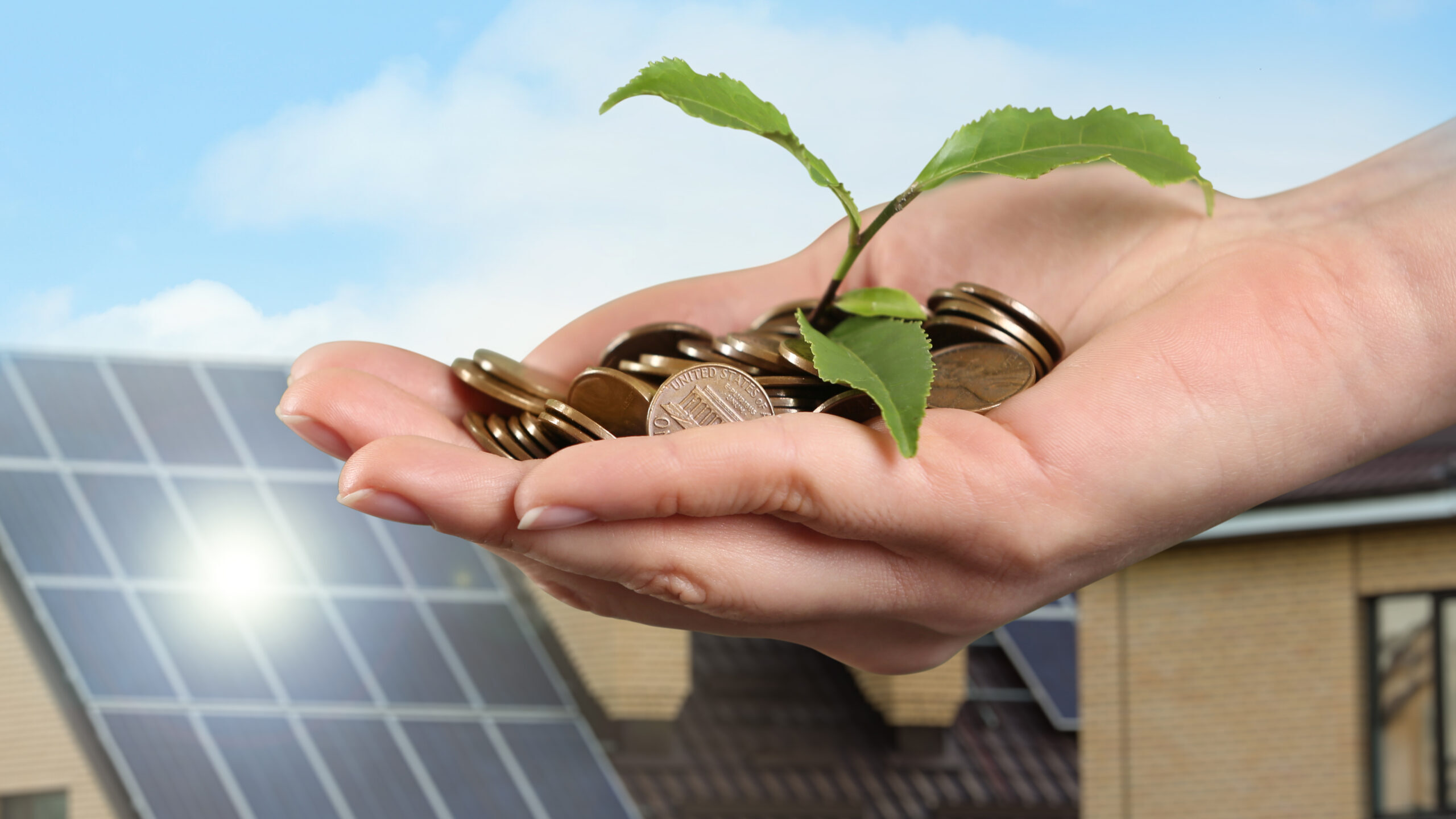 hand holding money for savings from solar energy